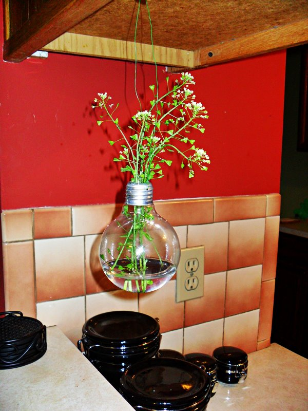 Hanging Light Bulb Vase